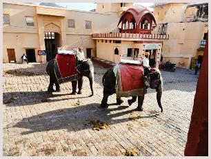visite du Triangle d'Or avec excursion à dos d'éléphant au fort Amber