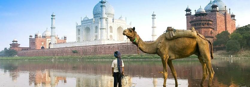 Services et prestations pour un séjour en Inde, tout ce qui est compris pour un circuit en Inde