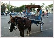Voyage en Inde, circuit balade en calèche à Bikaner offert