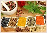 Voyage en Inde, offert, un cours de cuisine dans une famille indienne à Jaipur